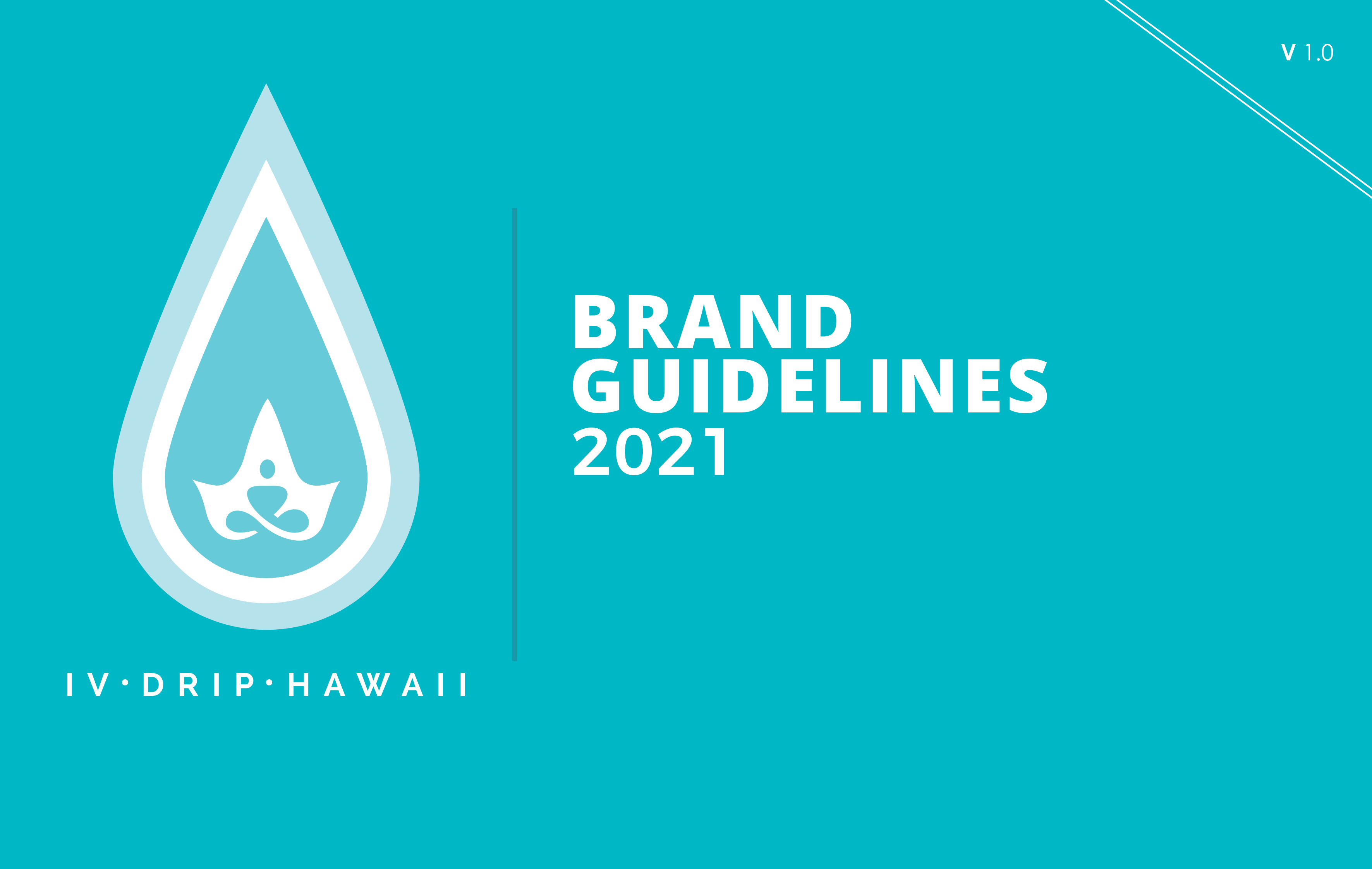 HAWAII DRIP BRAND BOOK 1 1